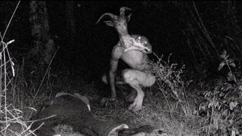 The Goatman of Maryland